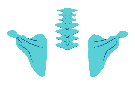 neck and shoulder illustration | Texas pain specialists